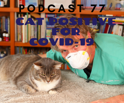 Cover art for [Ep77] Cat Tests Positive for COVID-19, Pet Friendly Disinfectants, Dogs sniffing out people sick with SARS-CoV2