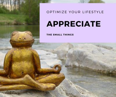 Cover art for Appreciate the Small Things
