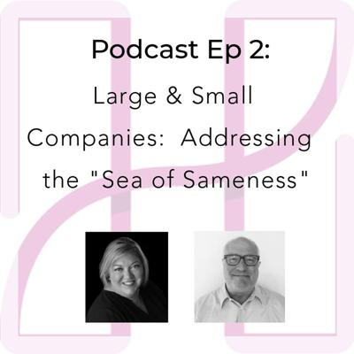 Cover art for Addressing the Sea of Sameness for Large & Small Companies