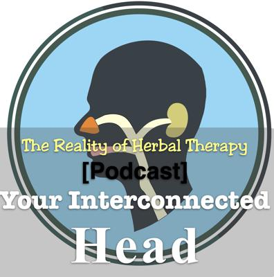 Cover art for Your Interconnected Head