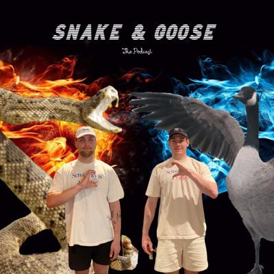 Snake & Goose: The Podcast