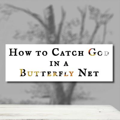 How to Catch God in a Butterfly Net