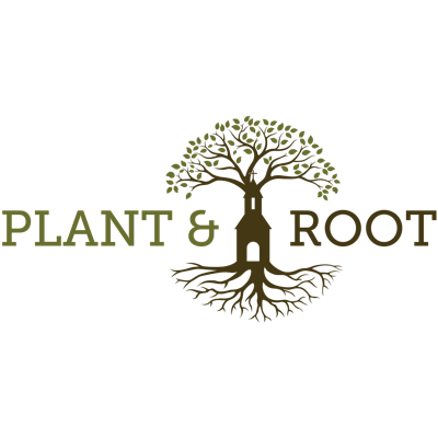 Plant and Root
