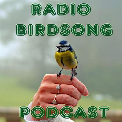 The original and famous Radio Birdsong, as heard all across Britain on FM and DAB radio.