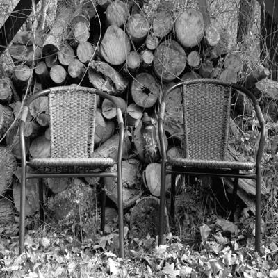 In the Corner Back By the Woodpile