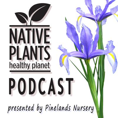 Connecting native plant enthusiasts with non-profit organizations specializing in pollinator habitat, restoration, clean water, and native plants.