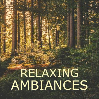 I try to provide high-quality ambiance to be used when meditating, practicing mindfulness or just in your everyday life to help you keep calm and relax.  I design these primarily using my own recordings.