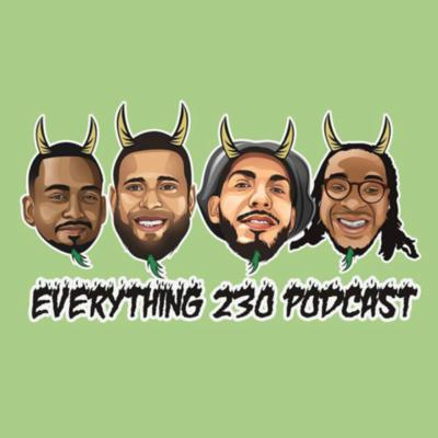 Everything 230 Podcast