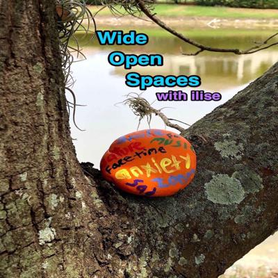 WideOpenSpaces Podcast