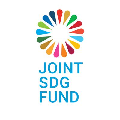Joint SDG Fund: A Time to Act