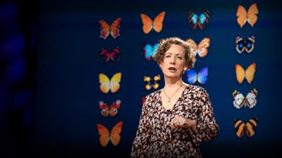 Cover art for How you can help save the monarch butterfly -- and the planet | Mary Ellen Hannibal