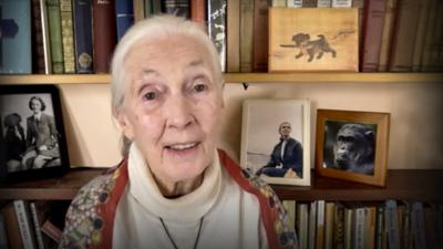 Cover art for Every day you live, you impact the planet | Jane Goodall
