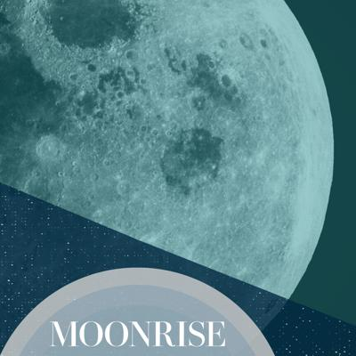 Cover art for The Dark Moon