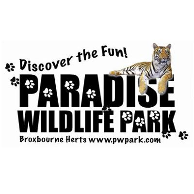 The Paradise Wildlife Park Keepers talk about the Animals we have at the park. Learn more about the 'Big Cats', the 'Reptiles' and more.   For more information about Paradise Wildlife Park please visit: www.pwpark.com