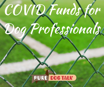 Cover art for 392 – Access to COVID Relief Funds for Dog Professionals