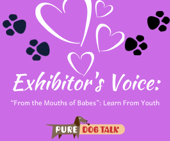 """Cover art for 391 – """"From the Mouths of Babes"""": Learn From Youth 
