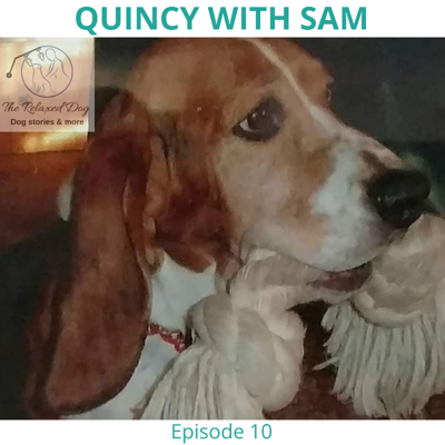 Cover art for Episode 10 Quincy with Sam