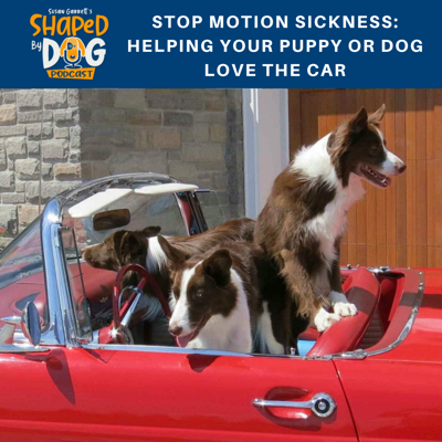 Cover art for Stop Motion Sickness: Helping Your Puppy or Dog Love the Car