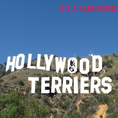 Hollywood Terriers