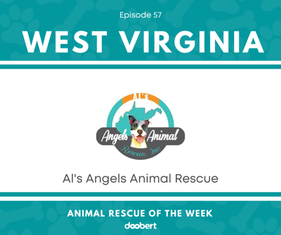 Cover art for Animal Rescue of the Week: Episode 57 – Al's Angels Animal Rescue, Inc.