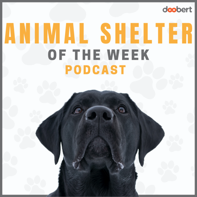 Each week we interview a different animal shelter and share with you their unique challenges and programs for helping animals.  Learn new ideas, listen to amazing stories, and be inspired by professionals that are saving animals every day.