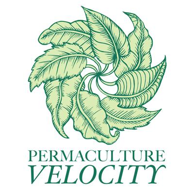 Permaculture Velocity with Soirée-Leone