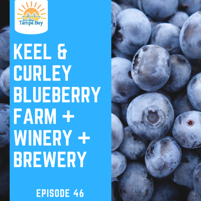 Cover art for Keel and Curley Winery, Blueberry Farm, and Brewery [Plant City]