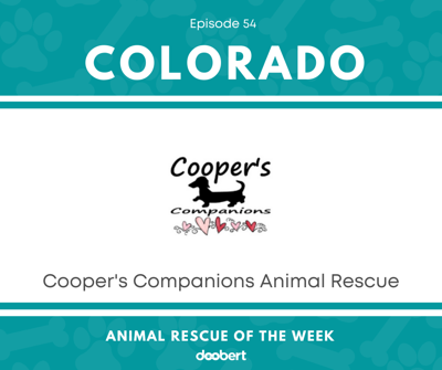 Animal Rescue of the Week: Episode 54 – Cooper's Companions Animal Rescue