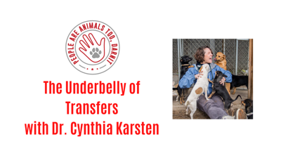 Cover art for Episode 20 - The Underbelly of Transfers with Dr. Cynthia Karsten