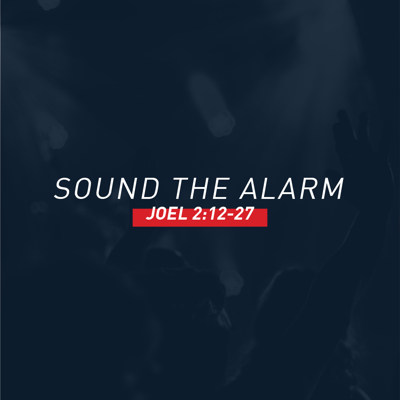 Cover art for Sound the Alarm