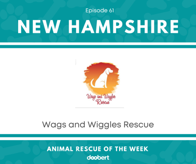 Cover art for Animal Rescue of the Week: Episode 61 – Wags and Wiggles Rescue