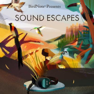 Cover art for Sound Escapes: Amazon Awakenings