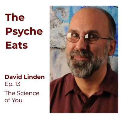 Cover art for David Linden: The Science of You