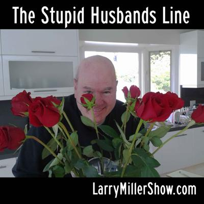 Cover art for The Stupid Husbands Line