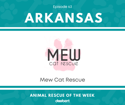 Cover art for Animal Rescue of the Week: Episode 63 – Mew Cat Rescue