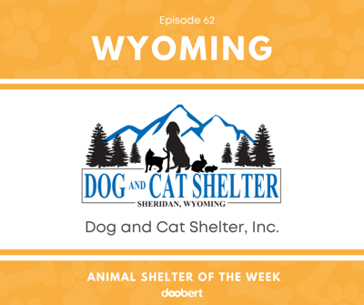 Cover art for Animal Shelter of the Week: Episode 62 – Dog and Cat Shelter, Inc.