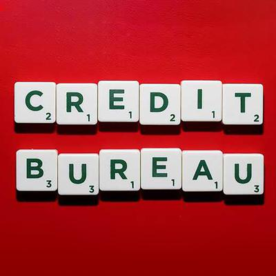 Cover art for The Global Business of Credit Bureaus