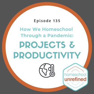 Cover art for 135: How We Homeschool Through a Pandemic: Projects & Productivity