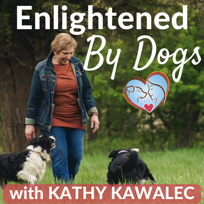 Welcome to the Enlightened by Dogs podcast…where training and behavior meet Heart and Soul for an inspirational and educational journey. Each week, we'll take a dive deep into the human-dog connection and explore strategies that will inspire you to create legendary, enlightened partnership with your dog.   Kathy Kawalec has always had a deep resounding connection with dogs and she has devoted her life to being their voice in a world where not many are TRULY listening.  This passion is fueled by her traumatic childhood experience of being voiceless in the face of abuse … and her painful oppression as a woman.  Her lifelong journey led Kathy to become an expert in dog behavior, positive training, holistic healing, the human-dog bond, the mind-body-spirit connection, and intuitively communicating heart-to-heart.  Kathy Kawalec is an author, writer, the founder of Dancing Hearts Cognitive Dog Training and creator of the Brilliant Partners Academy, The Foundation Formula, Herding Partners Academy, and Creative Alchemy Passion Plan.    Whether your relationship with your dog heals old wounds, inspires new beginnings, or ignites a long extinguished spark for true connection ... this show is tailor-made for you!!