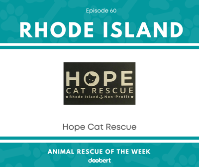 Cover art for Animal Rescue of the Week: Episode 60 – Hope Cat Rescue