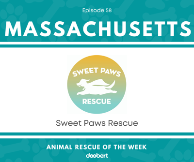 Cover art for Animal Rescue of the Week: Episode 58 – Sweet Paws Rescue