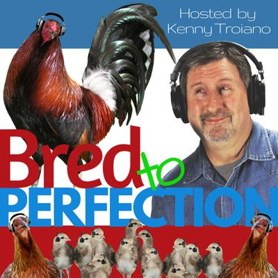 Cover art for Ep48 – Interview with Danny Feathers