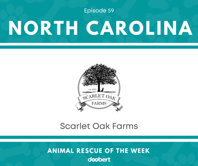 Cover art for Animal Rescue of the Week: Episode 59 – Scarlet Oak Farms