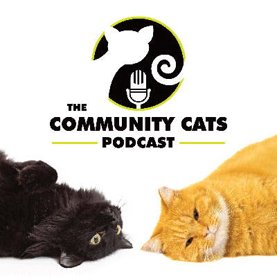 Our mission is to provide education, information and dialogue that will create a supportive environment empowering people to help cats in their community.