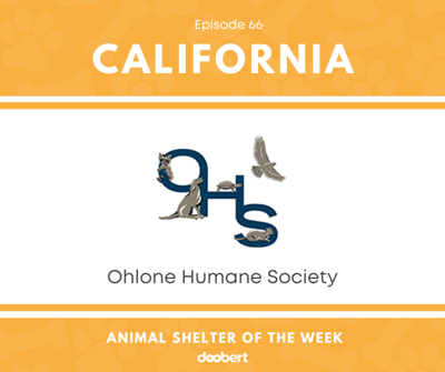 Cover art for Animal Shelter of the Week: Episode 66 – Ohlone Humane Society