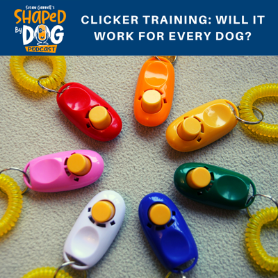 Cover art for Clicker Training: Will it Work for Every Dog?