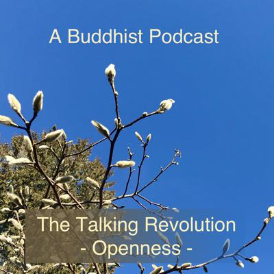 Cover art for A Buddhist Podcast - The Talking Revolution - Openness