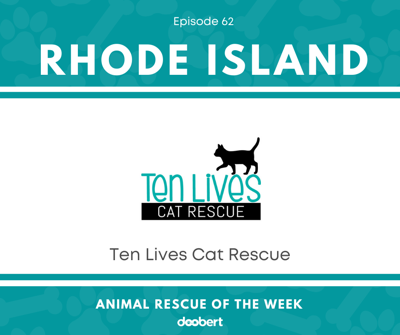 Cover art for Animal Rescue of the Week: Episode 62 – Ten Lives Cat Rescue
