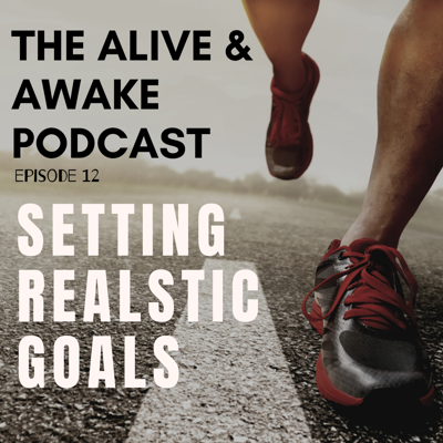 Cover art for Setting Realistic Goals