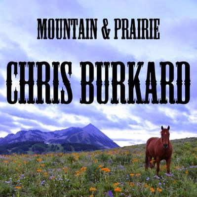 Cover art for Chris Burkard - The Art of Suffering